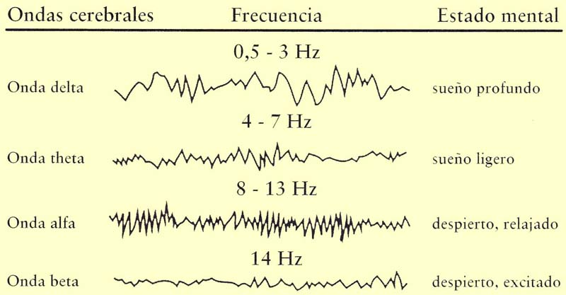 https://errantesengris.files.wordpress.com/2011/05/ondas-cerebrales-tabla-espac3b1ol.jpg